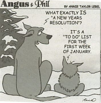new_year_s_eve-new_year_s-resolutions-6